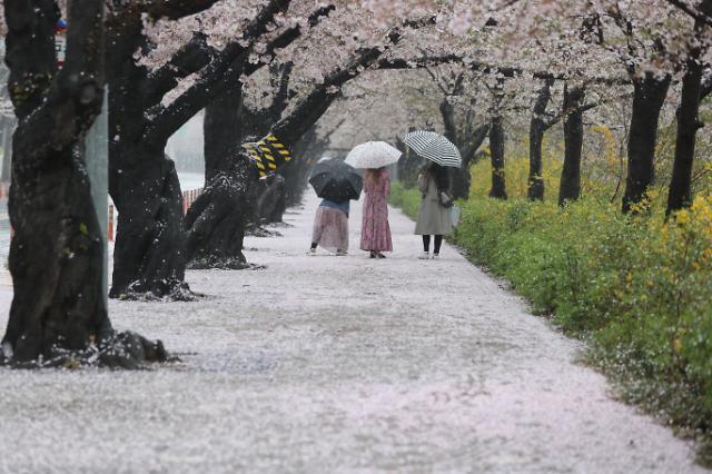 """[내일 날씨] 화요일 오전까지 전국 봄비...""""출근길 우산 챙기세요"""""""