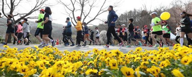 """대전 동구, '코로나 19 극복 대청호 벚꽃길 마라톤 대회' 개최···""""올해는 비대면으로"""""""