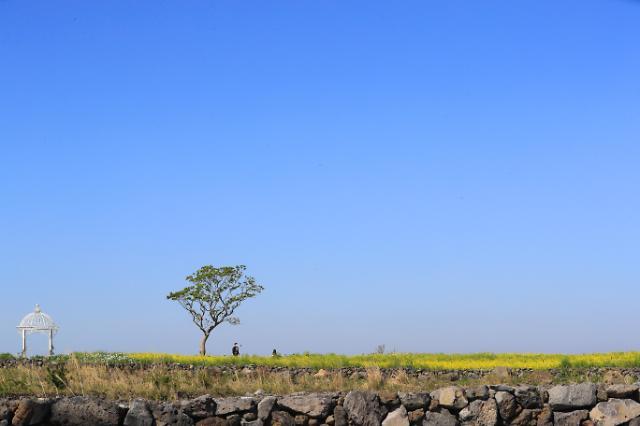 [포토] 제주의 파란 하늘
