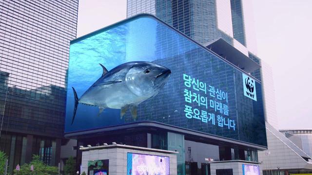 """""""참치 착하게 먹는 법…MSC 인증 확인하세요"""""""