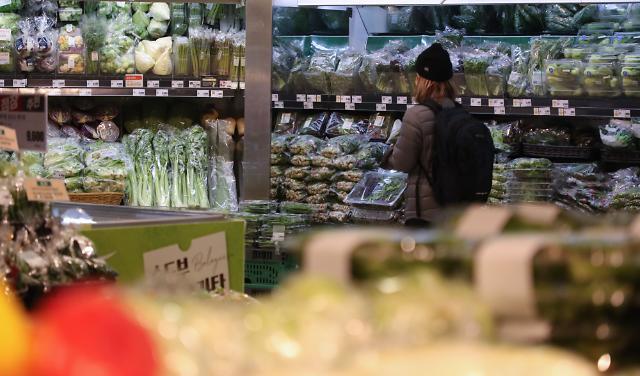 [상보] 4월 물가 2.3%↑...농축수산물·외식물가 상승에 먹거리 비상