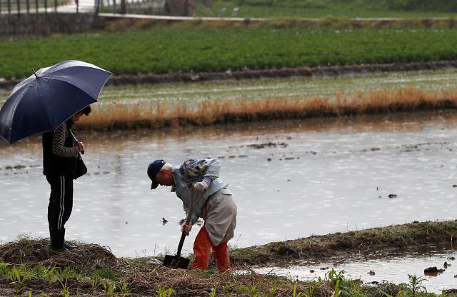 [내일 날씨] 오후부터 전국에 비···낮 최고기온 26도