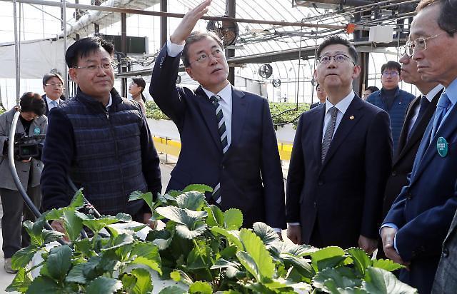 S. Korea starts construction of greenhouse-type smart farm in Kazakhstan