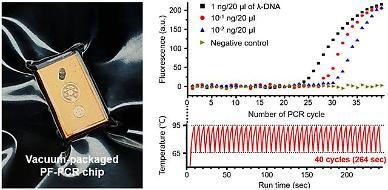 Researchers develop rapid PCR test technique for COVID-19