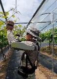 農作業にウェアラブルスーツの適用へ…ファーム韓農・現代ロテムの協力