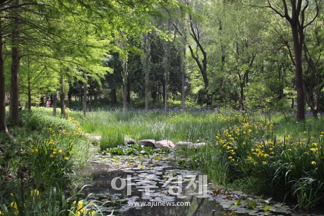 대구시, 동북부권 지역균형발전 '제2수목원' 조성