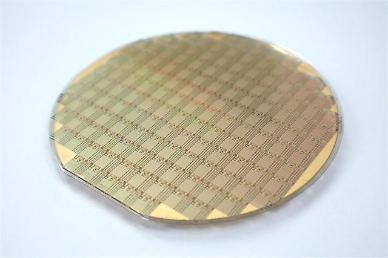 Gallium nitride power amplification device localized in S. Korea