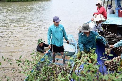 SK Innovation tiếp tục dự án trồng cây phục hồi diện tích rừng ngập mặn tại Việt Nam