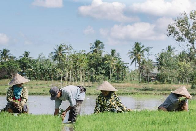 [NNA] 印尼, 중산층 노동자는 불과 1300만명... 세계은행 보고서