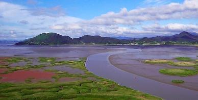 Researchers prove mud flats ability to capture carbon