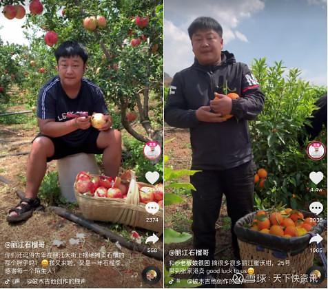 """[그래프로 보는 중국]""""20분 만에 석류 10억원어치 완판!"""" 中 농촌 라방 전성시대"""