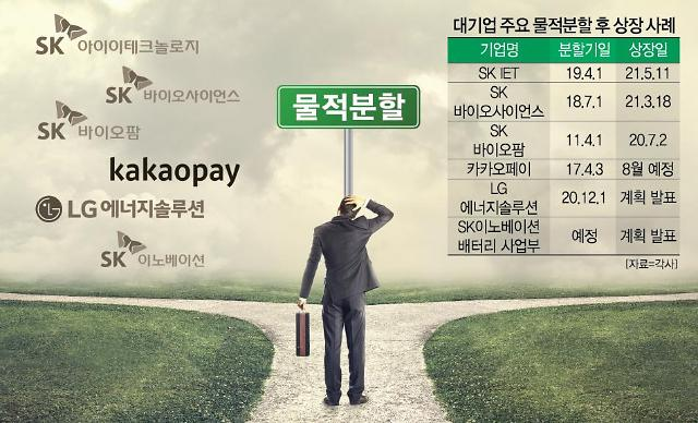 [분할상장의 역설②] 그룹내 차별 우려 vs 대규모 투자 위해...SK·카카오 등 물적분할 딜레마