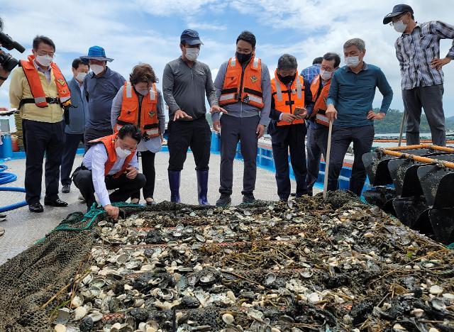 해수부, 추경 243억원 확보…수산물 할인 등 지원