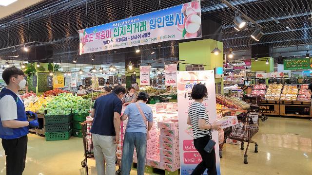 """청도군, '지역 농산물 소비촉진' 활동···""""농가 어려움 덜어준다"""""""