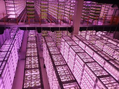 폭염 대비 지능형 온실 정보통신기술 장비 관리법은 ?
