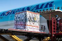 """大韓航空 """"17ヵ月間、旅客機で貨物40万tの輸送"""""""