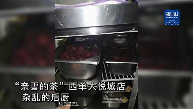 바퀴벌레에 상한 과일까지...중국 밀크티 브랜드 위생 논란