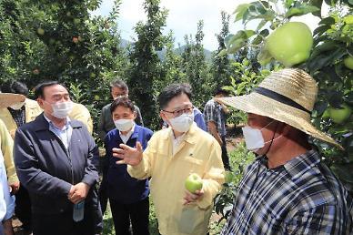 발로 뛰는 김현수 장관, 폭염 피해 예방 만전…농산물 수급 차질 없게