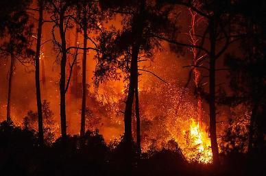 홍수에 산불까지 날씨 재앙 몰아친다…전세계 기후변화 경각심 ↑