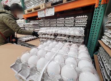 """[아주 쉬운 뉴스 Q&A] """"한판에 7000원""""...금값된 달걀 가격, 왜 안 떨어질까요?"""