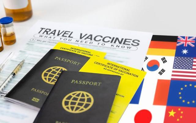 [경계불문 DX] 디지털백신여권 국제표준화 시동…DID 킬러앱 되나