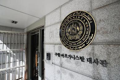 """靑 """"아프간 조력인, 난민 아닌 특별공로자 신분"""""""