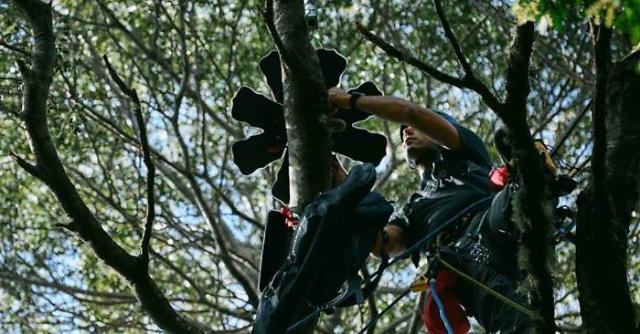 화웨이, 클라우드 기술로 멸종위기 다윈 여우 보호한다