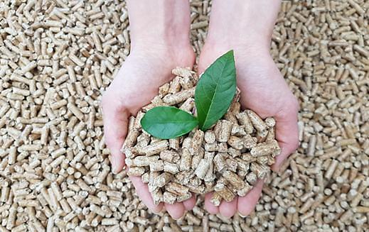 S. Korean companies agree to replace imported pellets with domestic biomass fuel from 2025