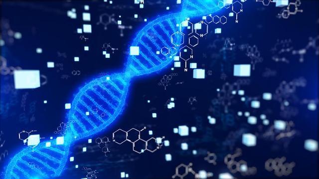 韩国研究人员发现可调节致癌基因的四重螺旋DNA