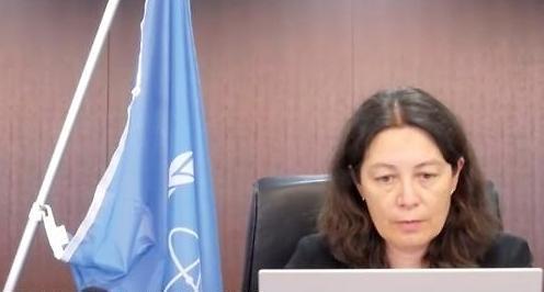 IAEA总干事:韩中将参与日核水排海安全评估