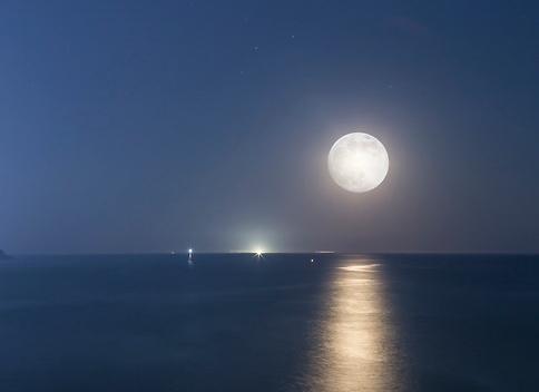 【亚洲人之声】海上升明月 天涯共此时
