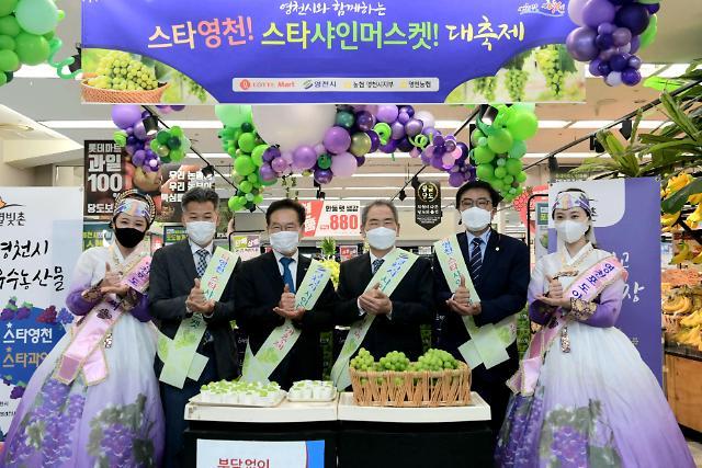 영천 포도, 롯데마트 전국 매장 동시 판매 中