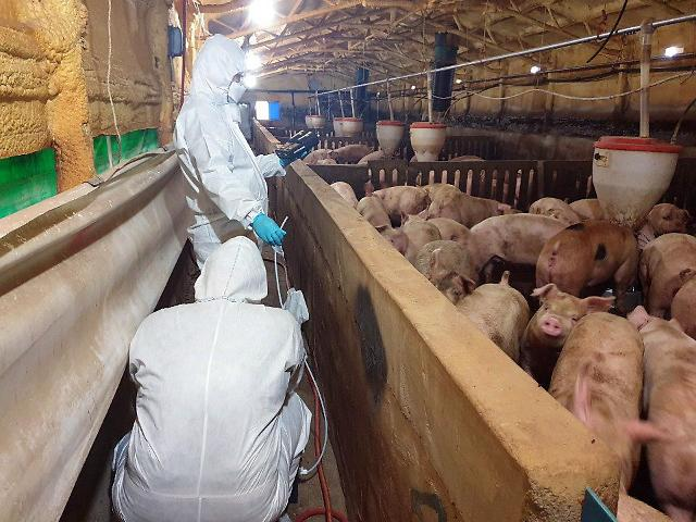 Researchers commercialize electron beam-based odor-reducing tech for livestock farms