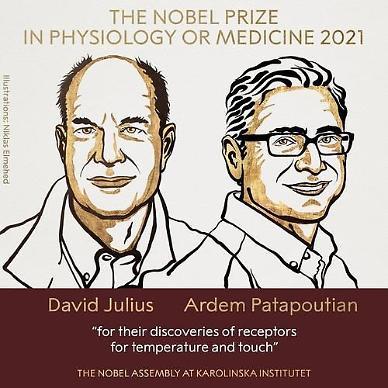 노벨 생리의학상에 줄리어스·파타푸티언…온도·촉각 수용체 발견