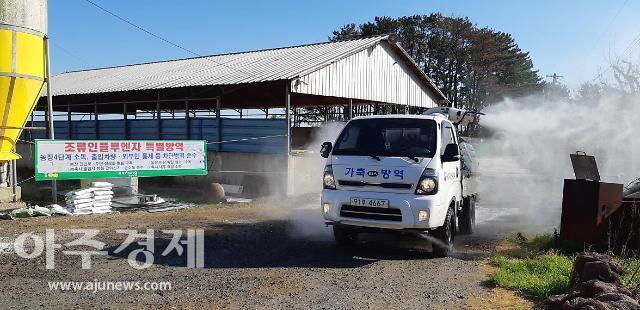 포천·안성·용인·논산·광주·영천 등 6곳 야생조류서 AI 항원 검출
