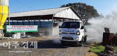 충남 논산천·전북 정읍천 야생조류서 AI 항원 검출
