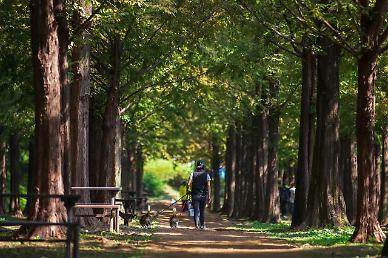 [지금, 여행] 함께 산책 가요 반려견과 함께 걷고 싶은 독(Dog)특한 산책로