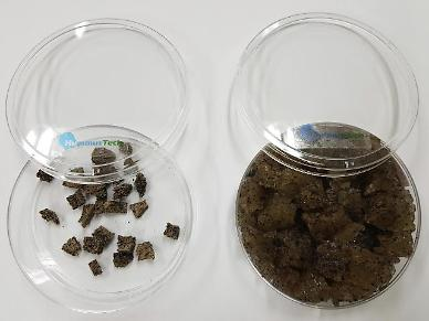 Researchers develop soil conditioner capable of storing water without using chemicals