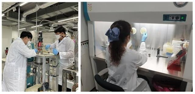 Researchers develop chemoenzymatic technique to extract precursor for biofuel from agricultural waste