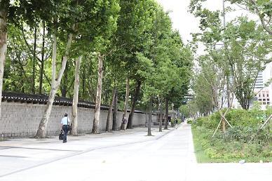 [기획] 보행로 넓혔더니 지역상권 매출이 쑥...걷기가 도시를 살린다