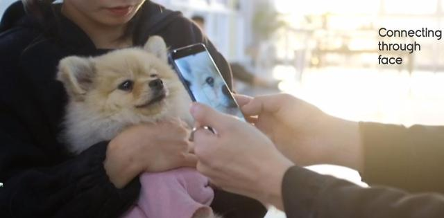 Tech startup develops easy pet registration service using facial recognition