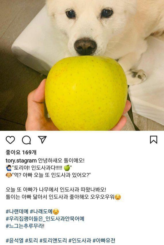 尹의 '상식초월 SNS'…'전두환 망언'에 웬 '반려견 사과'?
