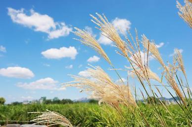 [내일 날씨] 전국 맑지만 낮부터 구름 많아져···아침에는 쌀쌀